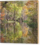 Autumn Reflection On Florida River Wood Print by Carol Groenen