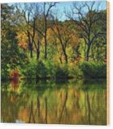 Autumn Reflections On Salt Creek IIi Wood Print