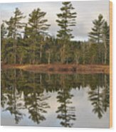 Autumn Reflector Wood Print