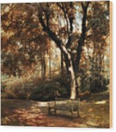 Autumn Repose Wood Print by Jessica Jenney