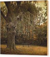 Autumn Respite Wood Print