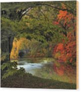 Autumn Reverie Wood Print