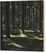 Autumn Revisited Wood Print by Frits Selier