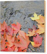 Autumn River Landscape Red Fall Leaves Wood Print