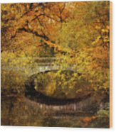 Autumn River Views Wood Print