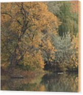 Autumn Riverbank Wood Print