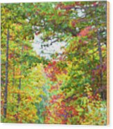 Autumn Road - Digital Paint Wood Print