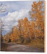 Autumn Road Wood Print