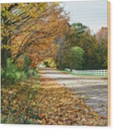 Autumn Road With Fence  Wood Print