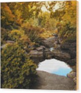 Autumn Rock Garden Wood Print