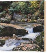 Autumn Rushing Mountain Stream Wood Print by Thomas R Fletcher