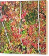 Autumn Sanctuary Wood Print