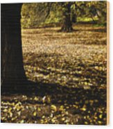 Autumn Scatterlings Wood Print