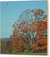 Autumn Scene 2 Wood Print