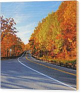 Autumn Scene With Road In Forest 2 Wood Print
