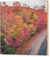 Autumn Season And Color Changing Leaves Season Wood Print
