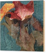 Autumn Seined Wood Print