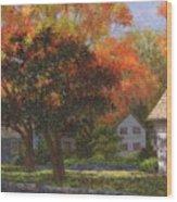 Autumn Shadow And Light Wood Print