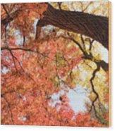 Autumn Sky Wood Print