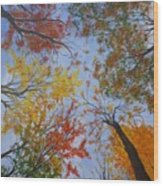 Autumn Sky Wood Print