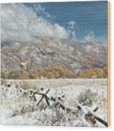 Autumn Snowfall In Aspen Wood Print