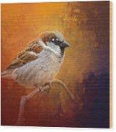 Autumn Sparrow Wood Print
