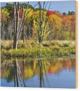 Autumn Splendor - Bolton Flats Wood Print