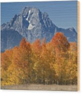 Autumn Splendor In Grand Teton Wood Print