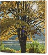 Autumn Splendour Wood Print