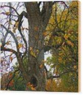 Autumn Spook Wood Print