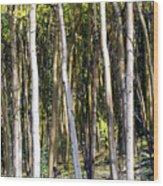 Autumn Stand Wood Print