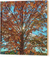 Autumn Star- Paint Wood Print