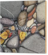 Autumn Stones Wood Print