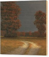 Autumn Storm 4 Wood Print