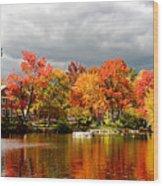 Autumn Storm Coming Wood Print