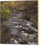 Autumn Stream Wood Print by Andrew Soundarajan