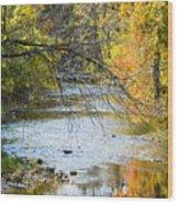 Autumn Stream Reflections Wood Print