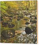 Autumn Stream Reflections Wood Print