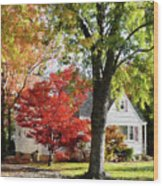 Autumn Street With Red Tree Wood Print