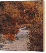 Autumn Stroll No23 Wood Print
