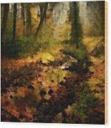 Autumn Sunrays Wood Print