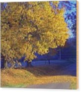 Autumn Sunrise In The Country Wood Print