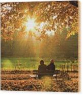 Autumn Sunshine In The Lichtentaler Allee. Baden-baden. Germany. Wood Print