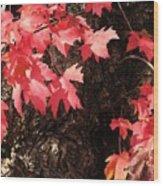 Autumn Surprise Wood Print