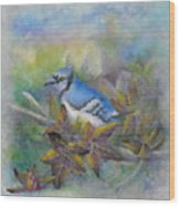 Autumn Sweet Gum With Blue Jay Wood Print