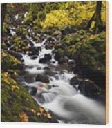 Autumn Swirl Wood Print