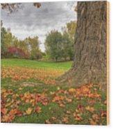 Autumn Tale Wood Print