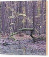 Autumn Theme Wood Print