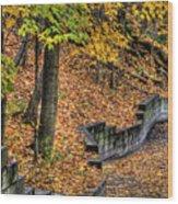 Autumn Trail - Rockyriver Metroparks Wood Print