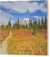 Autumn Trail Wood Print